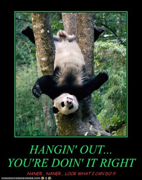 HANGIN' OUT... YOU'RE DOIN' IT RIGHT