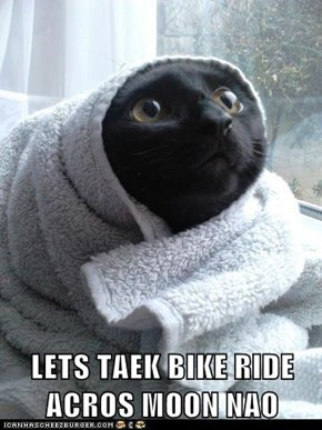 When You Let Your Cat Watch E.T.