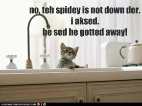 no, teh spidey is not down der. i aksed. he sed he gotted away!