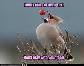 Mom's Rules to Live by #17
