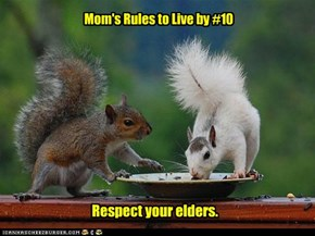 Mom's Rules to Live by #10