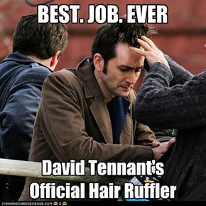 David Tennant's Hair Ruffler