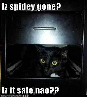 Iz spidey gone?  Iz it safe nao??