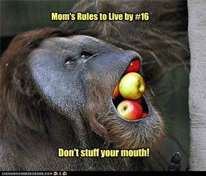 Mom's Rules to Live by #16