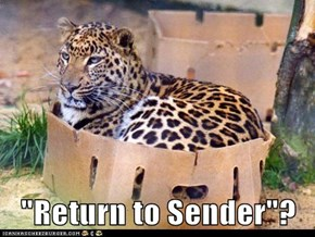 """Return to Sender""?"