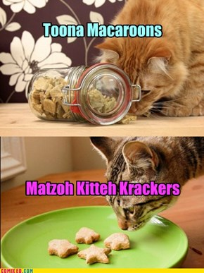 More kitteh treats for the Purr Mitzvah