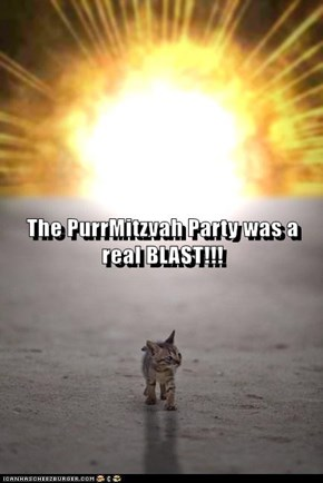 The PurrMitzvah Party was a real BLAST!!!