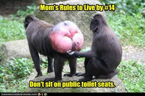 Mom's Rules to Live by #14