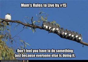 Mom's Rules to Live by #15