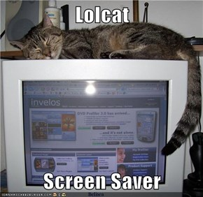 Lolcat  Screen Saver