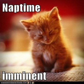 Naptime   imminent