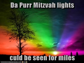 Da Purr Mitzvah lights  culd be seen for miles