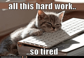 all this hard work..  ..so tired