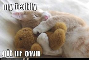 my teddy  git ur own