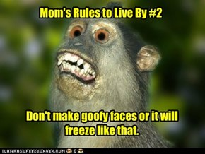 Mom's Rules to Live By #2