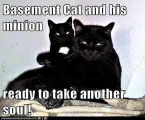 Basement Cat and his minion  ready to take another soul!