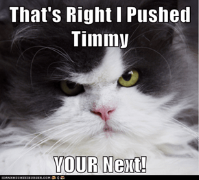 That's Right I Pushed Timmy  YOUR Next!