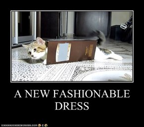 A NEW FASHIONABLE DRESS