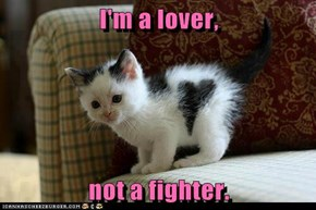 I'm a lover,   not a fighter.
