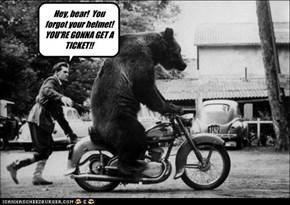 Hey, Bear!