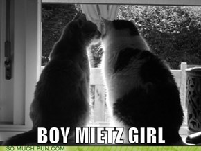 (German) Boy Meets Girl