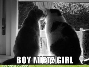 (German) Boy Meets Girl