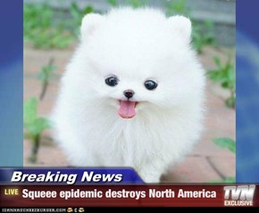 Breaking News - Squeee epidemic destroys North America