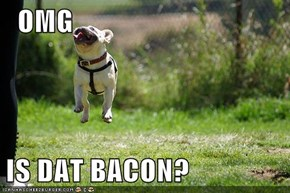It's Bacon!