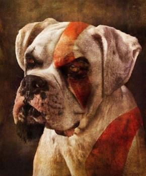 Dog of War