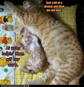 Ai Wubz Helpin' Mom Wif Her Wurk.
