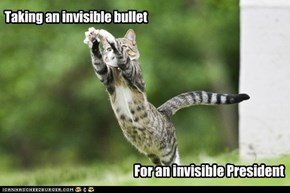 Taking an invisible bullet