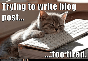 Trying to write blog post...  ....too tired.