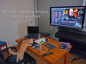 On Eve Online, the inexpected always happen.