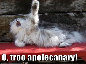 Dramatic Cat is Dramatic
