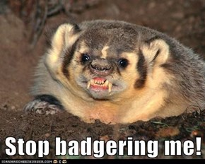 Stop Badgering Me!