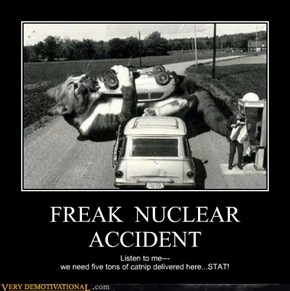 FREAK  NUCLEAR  ACCIDENT