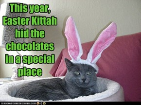 This year, Easter Kittah hid the chocolates in a special place