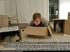 John Goodall, world famous cat-thropologist, observes cats in their natural habitat by pretending to be one of them, hoping to be accepted into their litter.