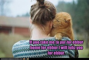 For Ebbur