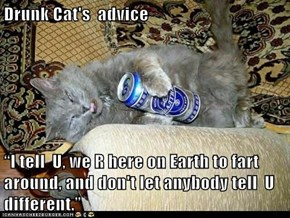 "Drunk Cat's  advice  ""I tell  U, we R here on Earth to fart around, and don't let anybody tell  U different."""