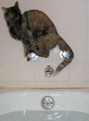 Dear God, Not the Bath