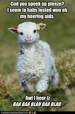 Maybe That's a Good Thing, Little Lamb.