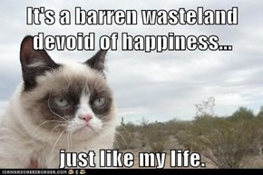 It's a barren wasteland devoid of happiness...  just like my life.