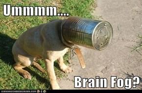 Ummmm....  Brain Fog?