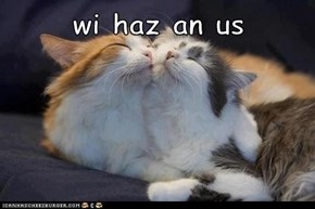 Wi Haz an Us