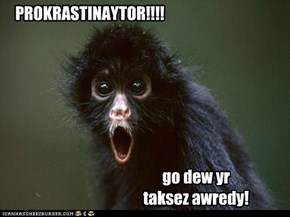 IRS Monkey iz Shocked