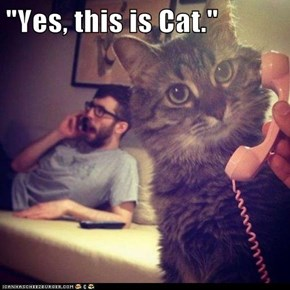 """Yes, this is Cat."""