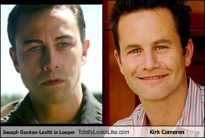 Joseph Gordon-Levitt in Looper Totally Looks Like Kirk Cameron