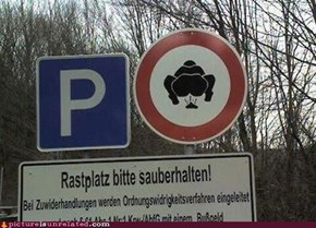 Does Ratzplatz Mean Poop in German?