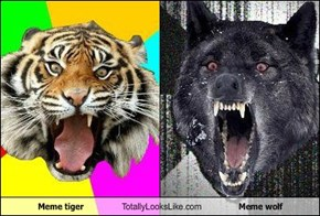 Meme tiger Totally Looks Like Meme wolf
